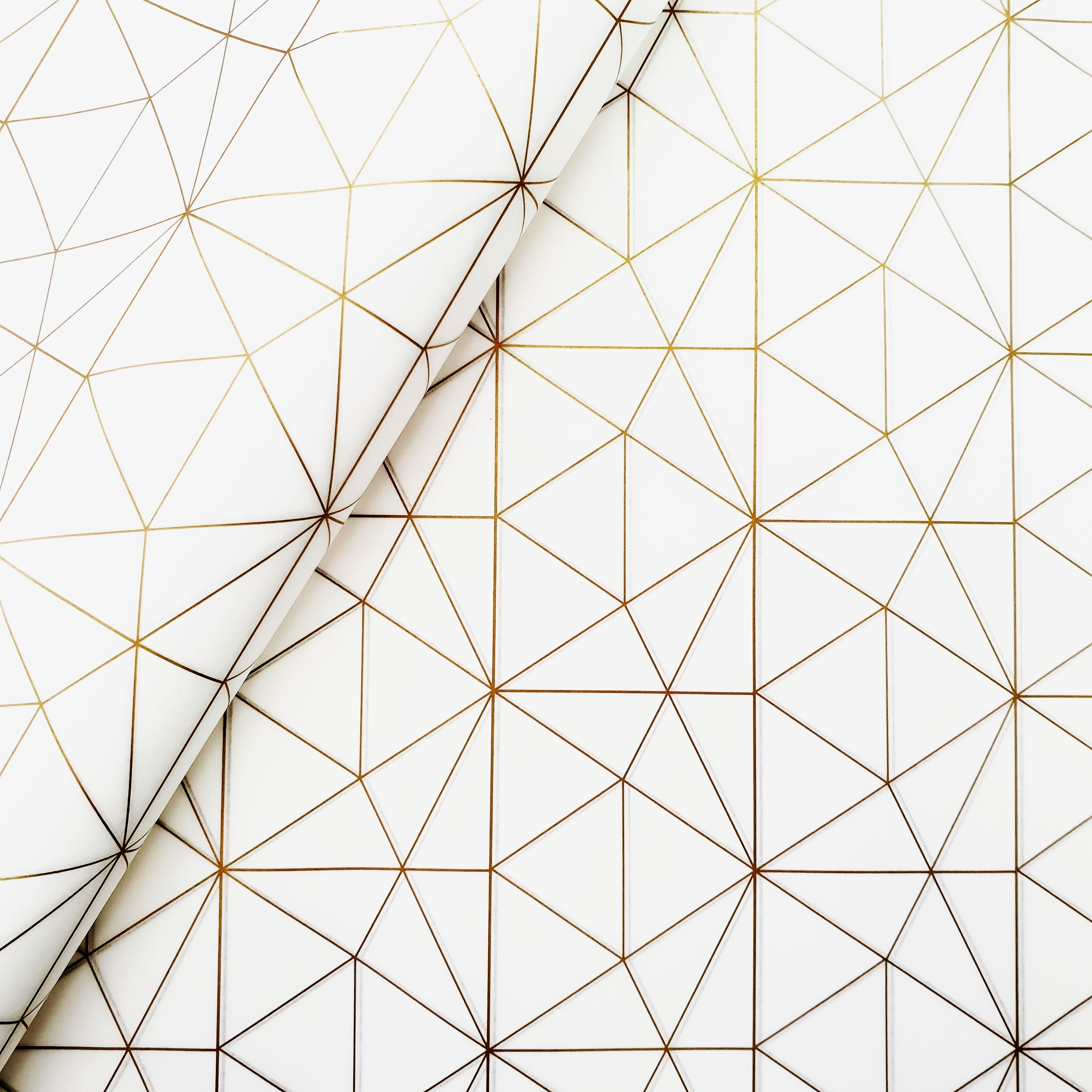 Tissue Paper - Geometric - Gold On White (Qty 25) TPGGW