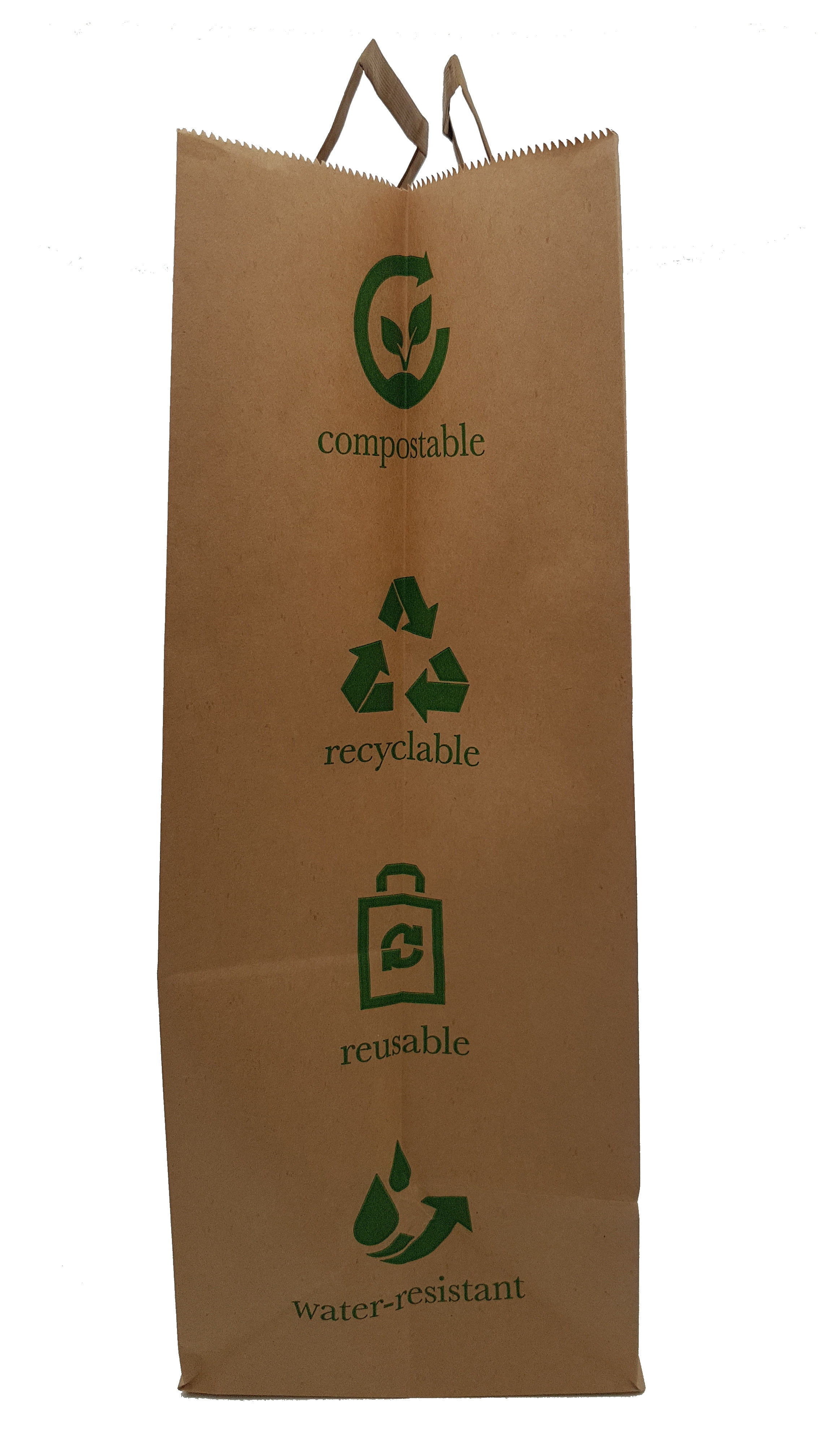 Paper Earth Carrier Bag (Qty 25)