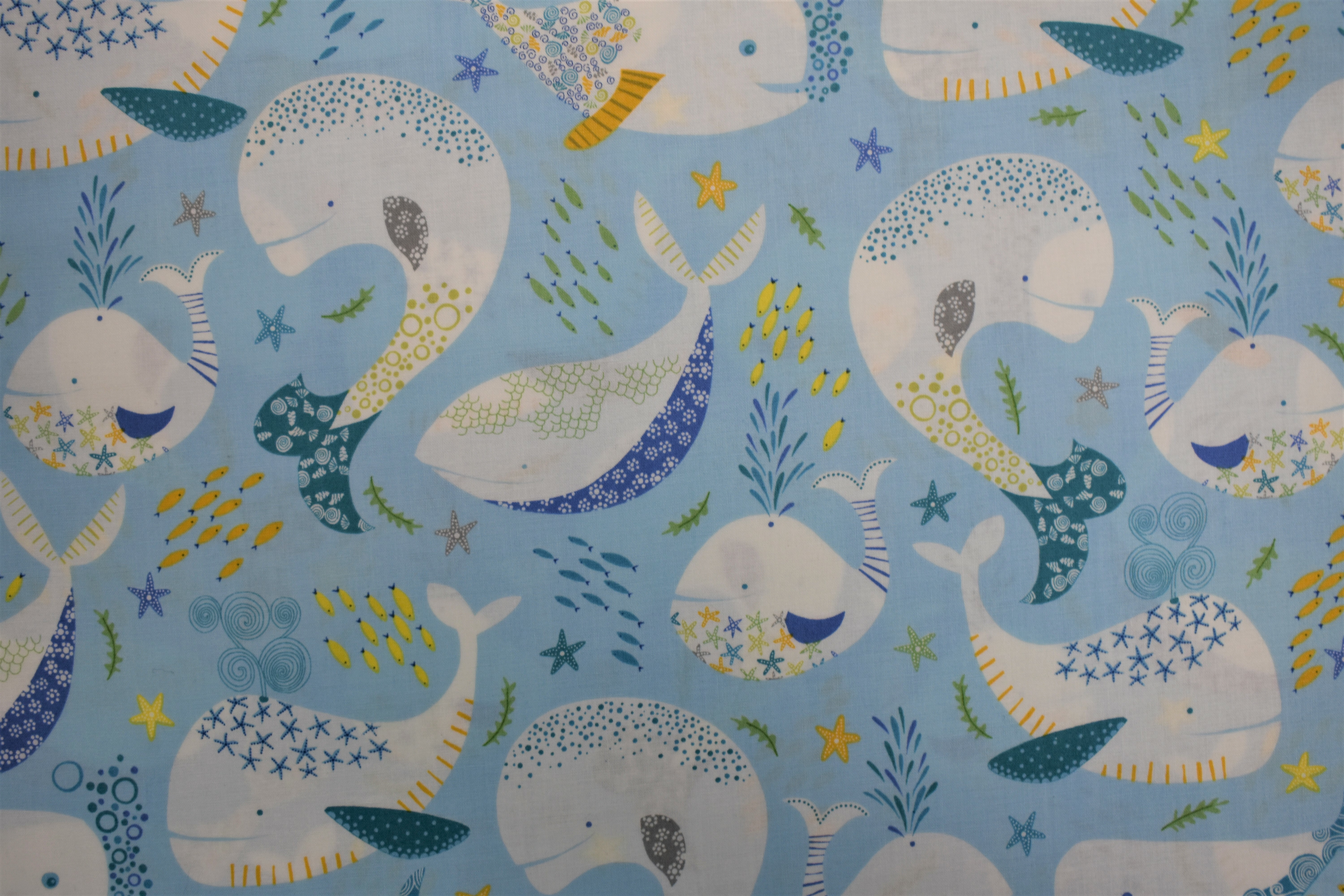 Little Squirt - Large Whales - Quilting Treasures 54985