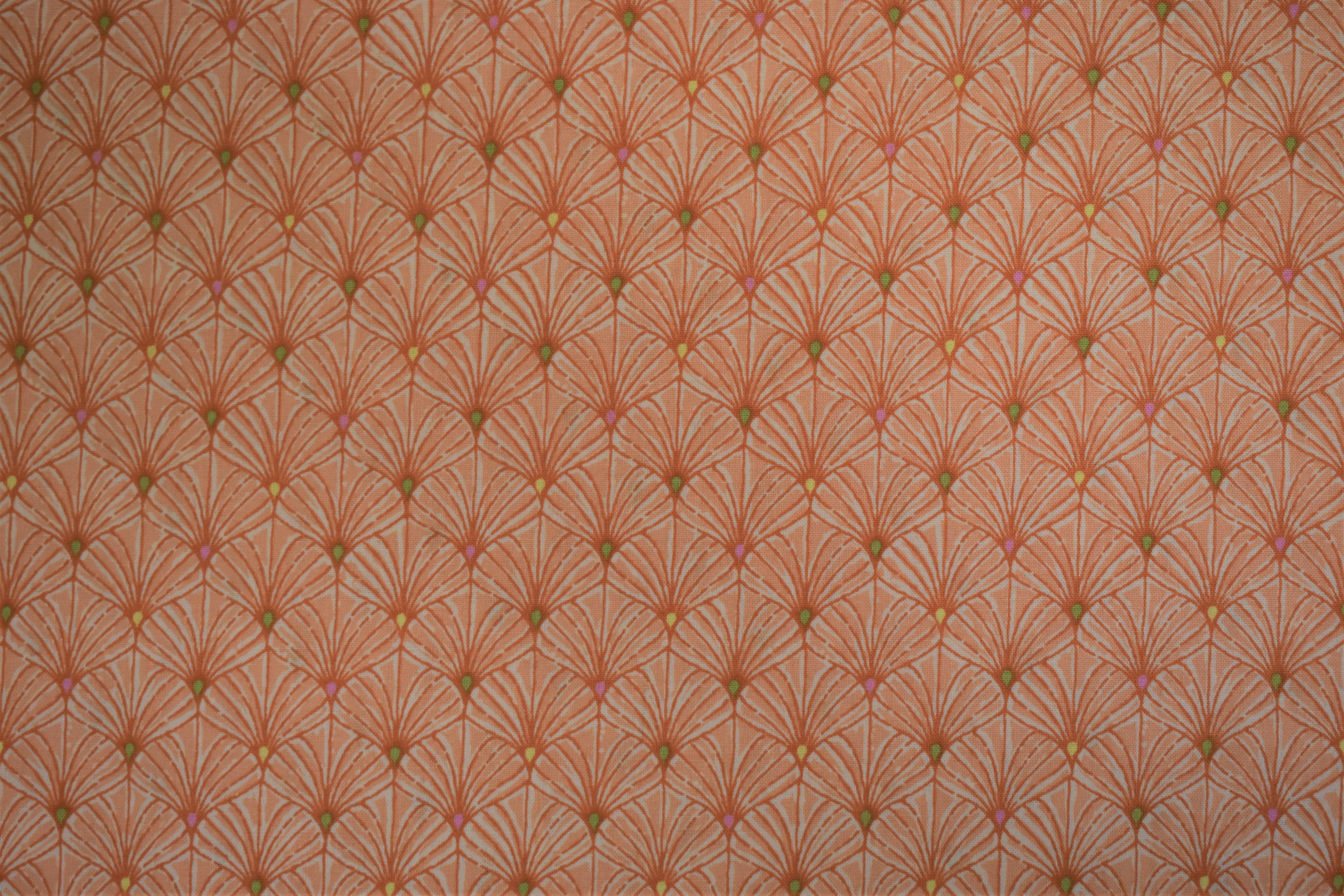 Orange Shell Scallop - Ink & Arrows 55012