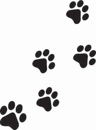 Kitty Paw Print Sticker