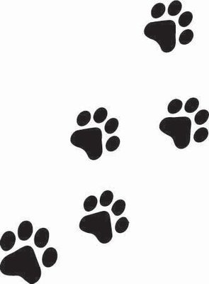 Kitty Paw Print Sticker