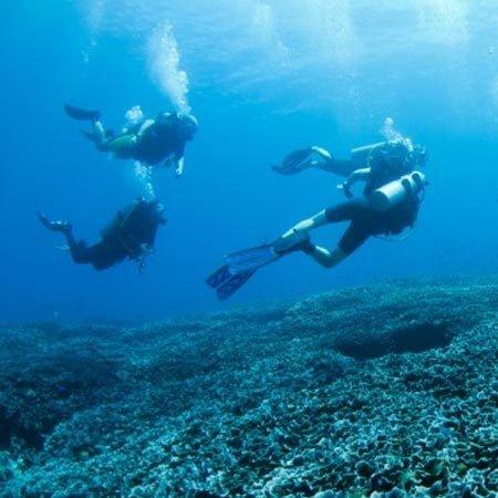 2 Dives 10054
