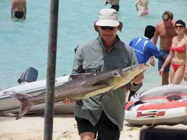 Sport Fishing 2 HR