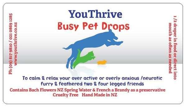 Busy Pet Drops Youthrive-busy-pet-drops