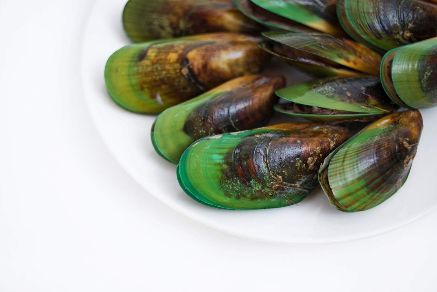 NZ Green Lipped Mussel Meat 5 x 1kg Bags NZ Mussels
