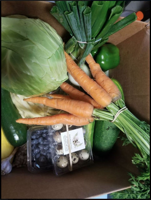 Island Falls, Maine CSA Box 2019 (Pickup Only, joint farms)