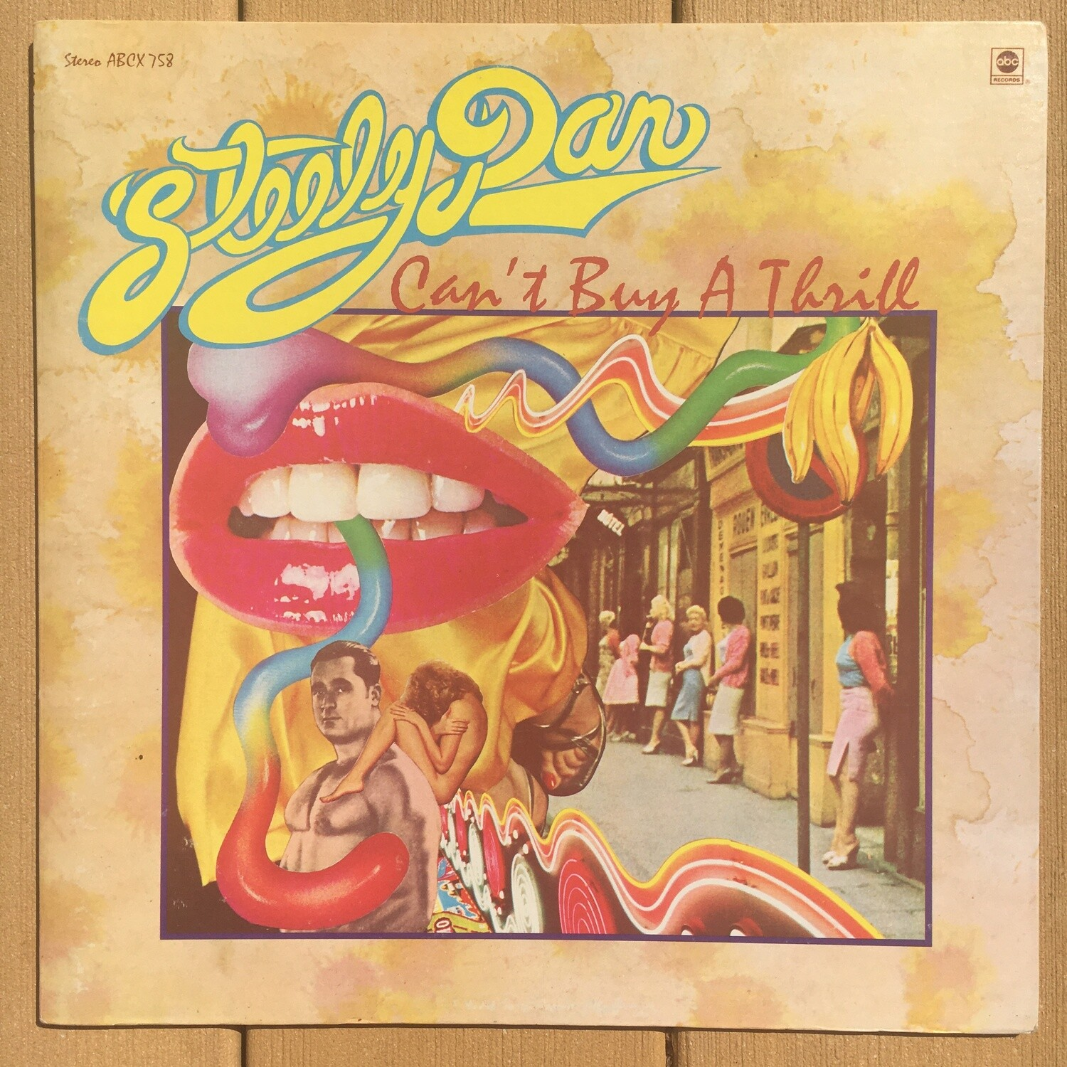 Steely Dan ~ Can't Buy A Thrill ~ (USED) Vinyl LP