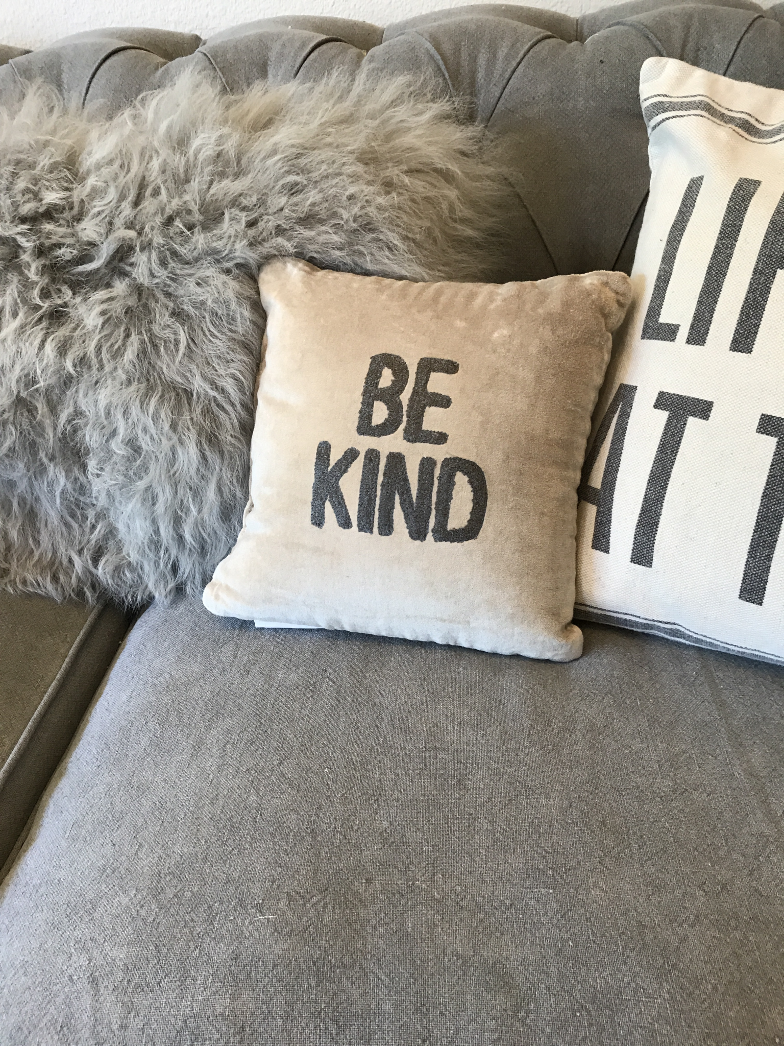 Velvet be kind pillow 36853