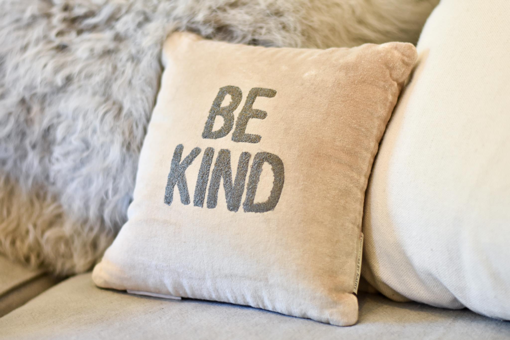 Velvet be kind pillow 36853 6M4QBZ772KNJM
