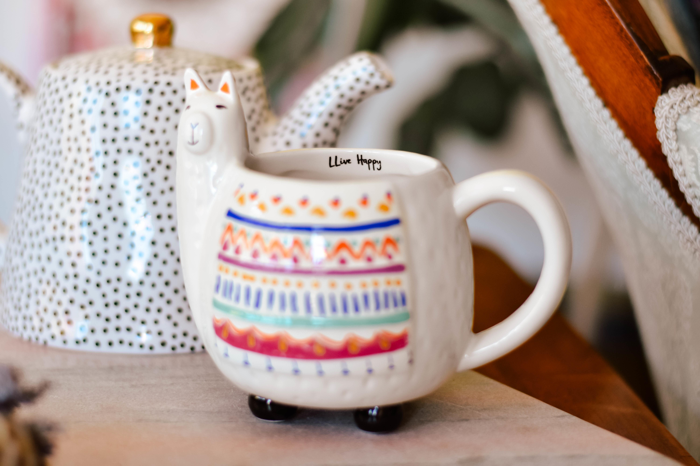 folk mug llama mug289