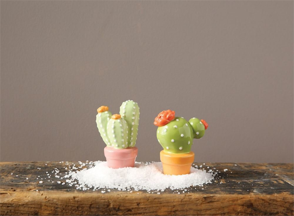 cactus salt and pepper da5990 9TV9X4N23JT1T