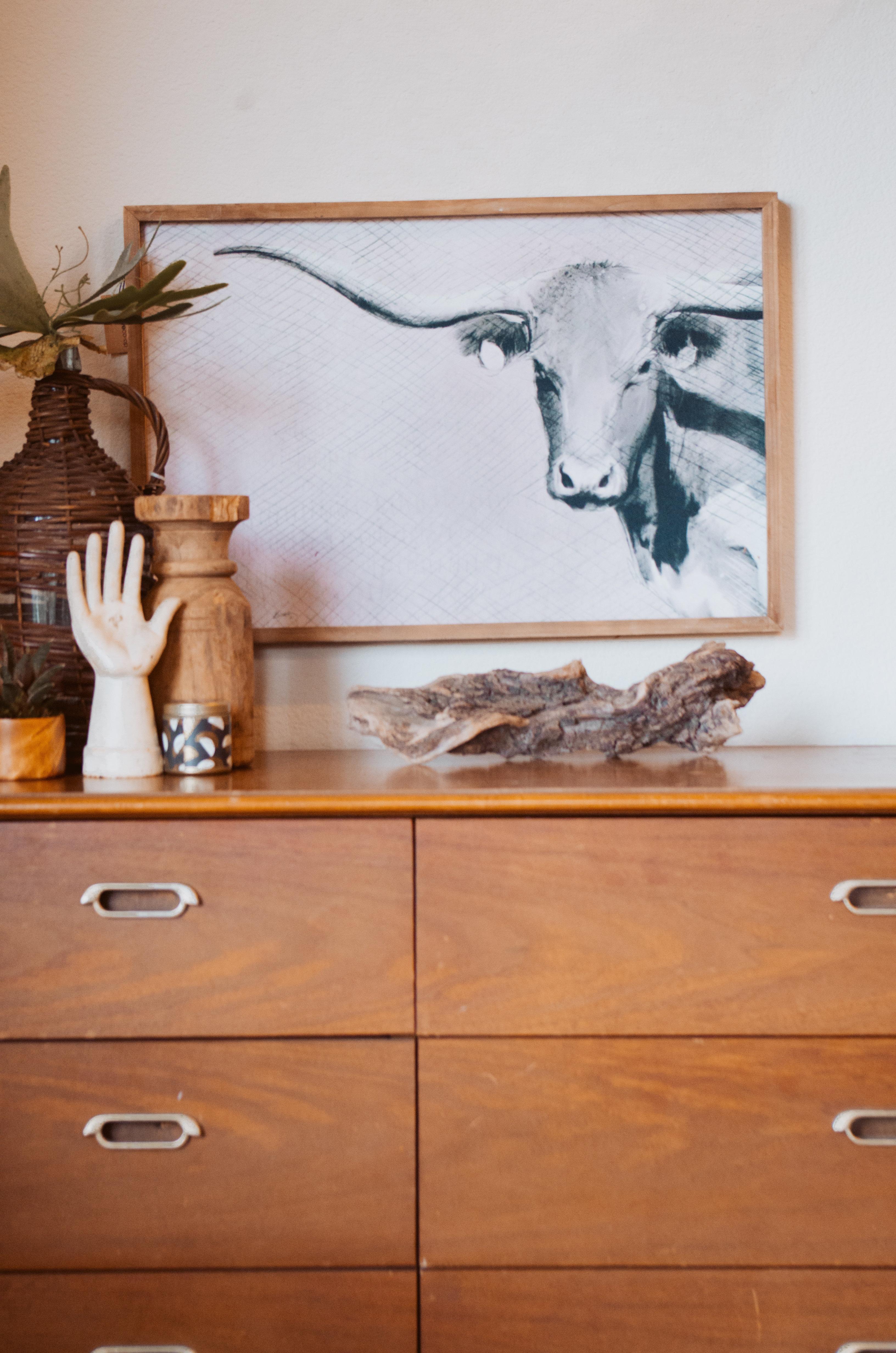 Long Horn Canvas Wall Decor df0063