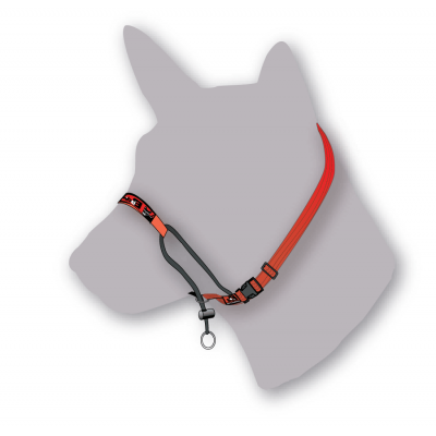 Black Dog Wear Training Halter