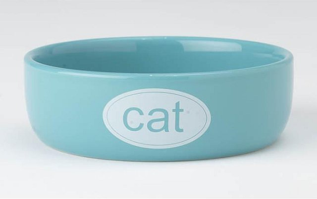 Cat Bowl - Ceramic Turquoise 1cup 00169