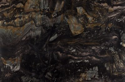 Quartzite - Fantasy Black leathered
