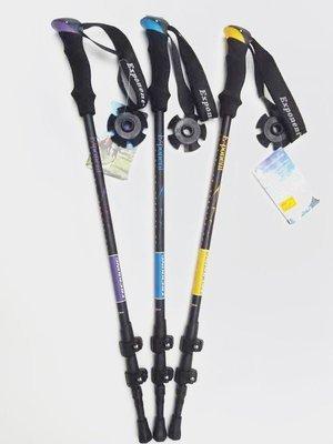 Палки для скандинавской ходьбы EXPONENT TREKING N10
