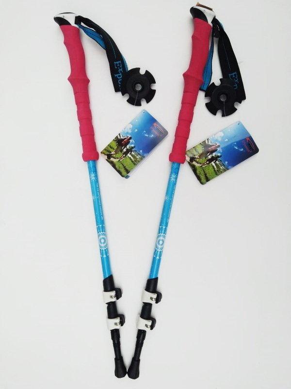 Палки для скандинавской ходьбы EXPONENT N1 00489