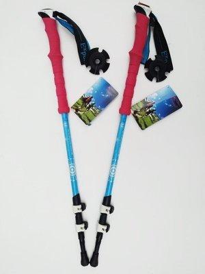 Палки для скандинавской ходьбы EXPONENT N1