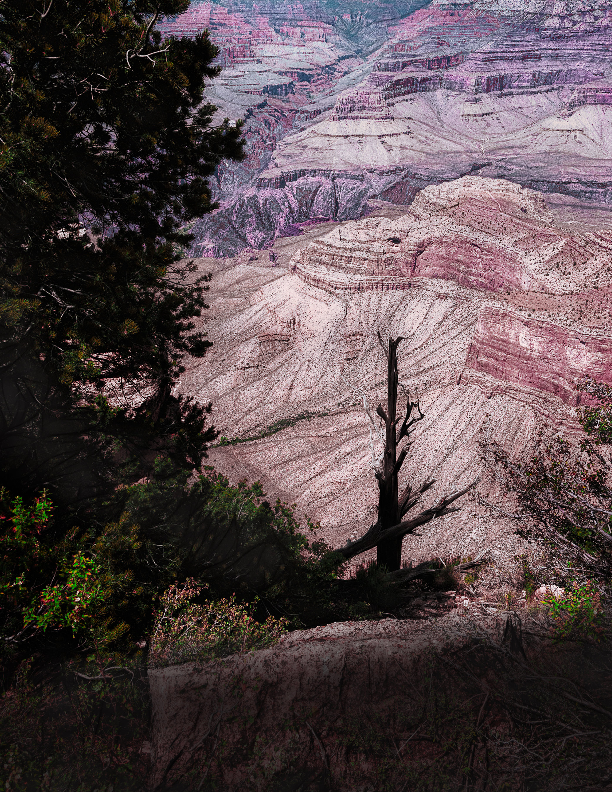 Grand Canyon Shadows 003-117