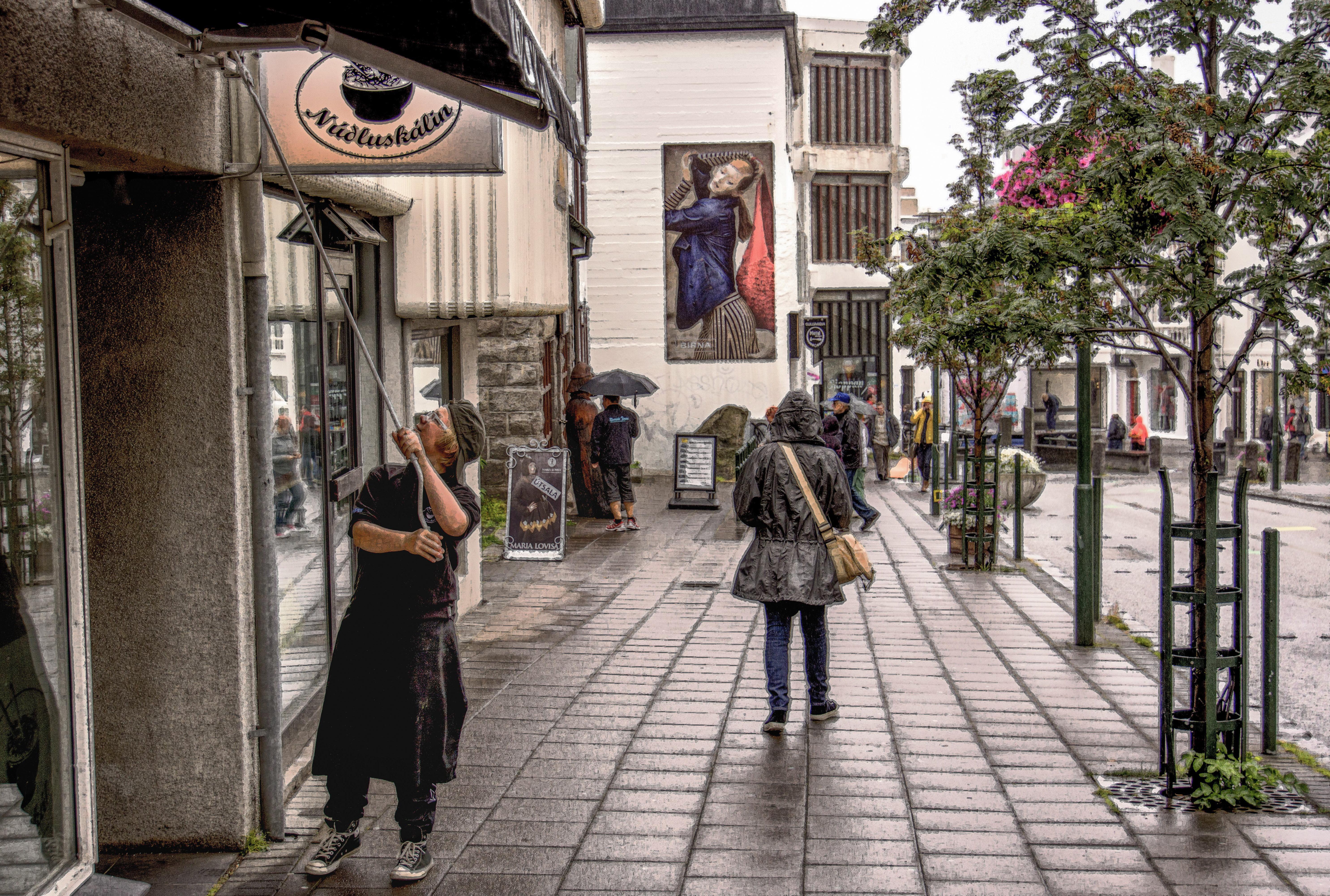 Iceland - Reykjavik Market Street 003-120