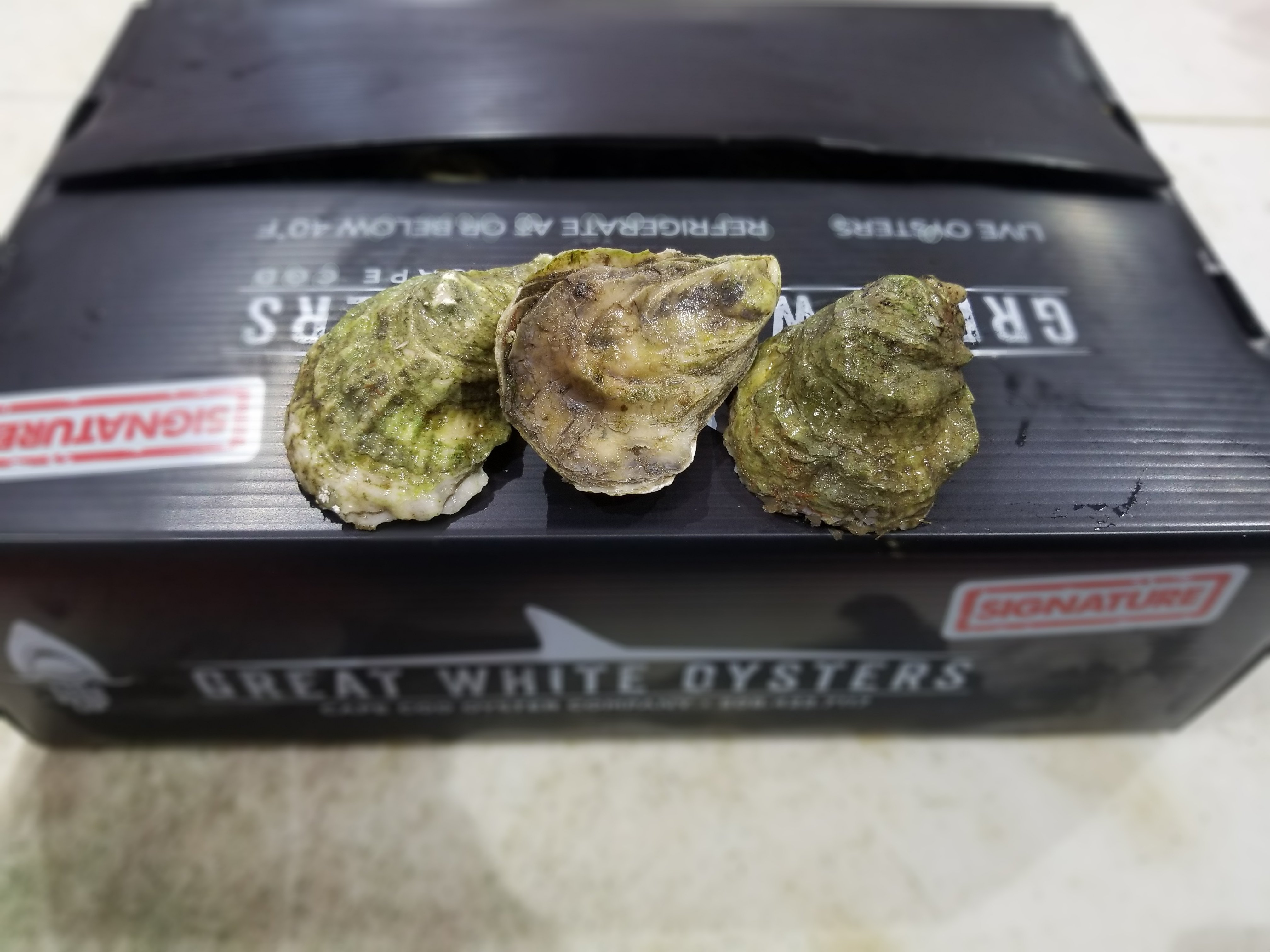 Great White Oysters - 50 ct 00010