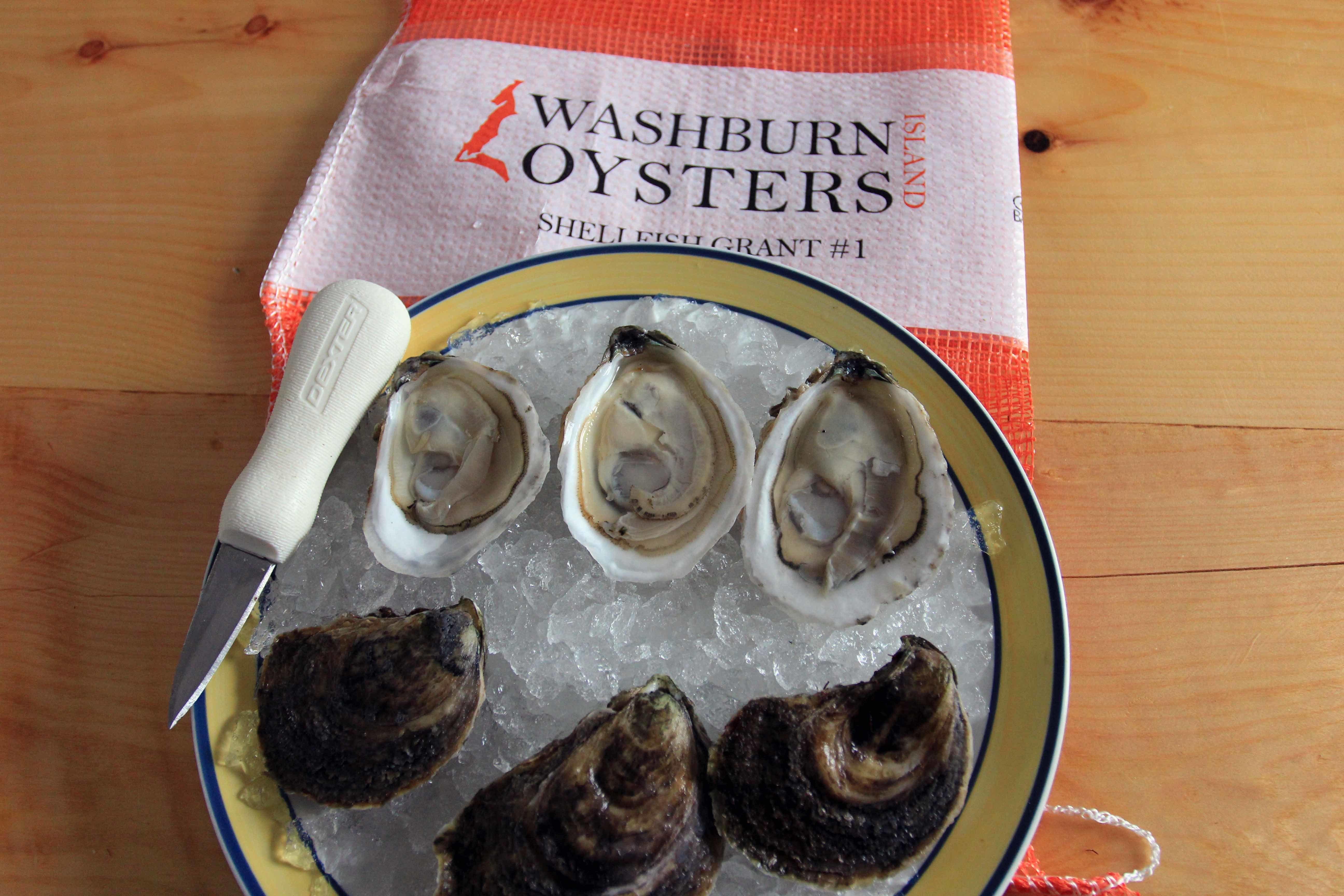 Washburn Island Oysters  - 50 ct 00012