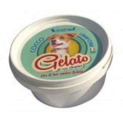 Gelato is til hund - Kokos/Hindbær