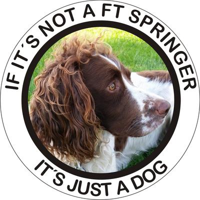 Klistermærke - FT Springer