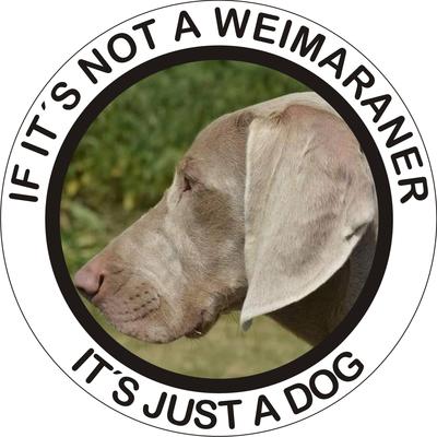 Klistermærke - Weimaraner