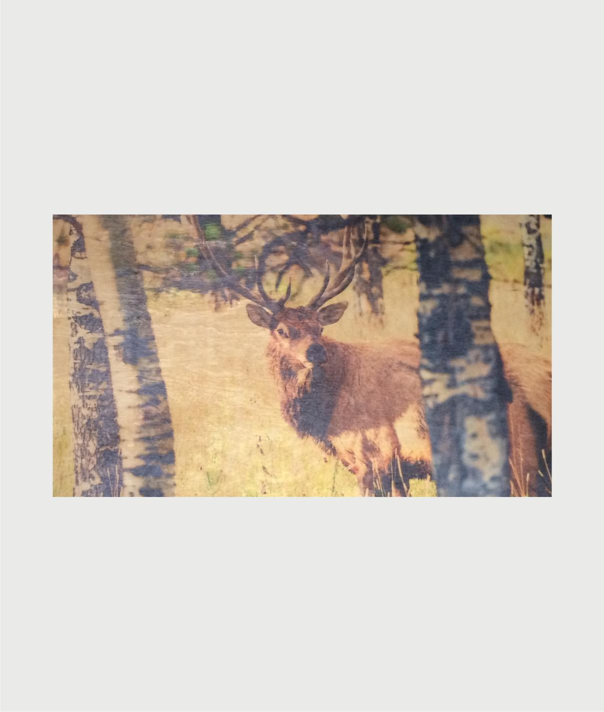 Billede i træ med hjort 00017
