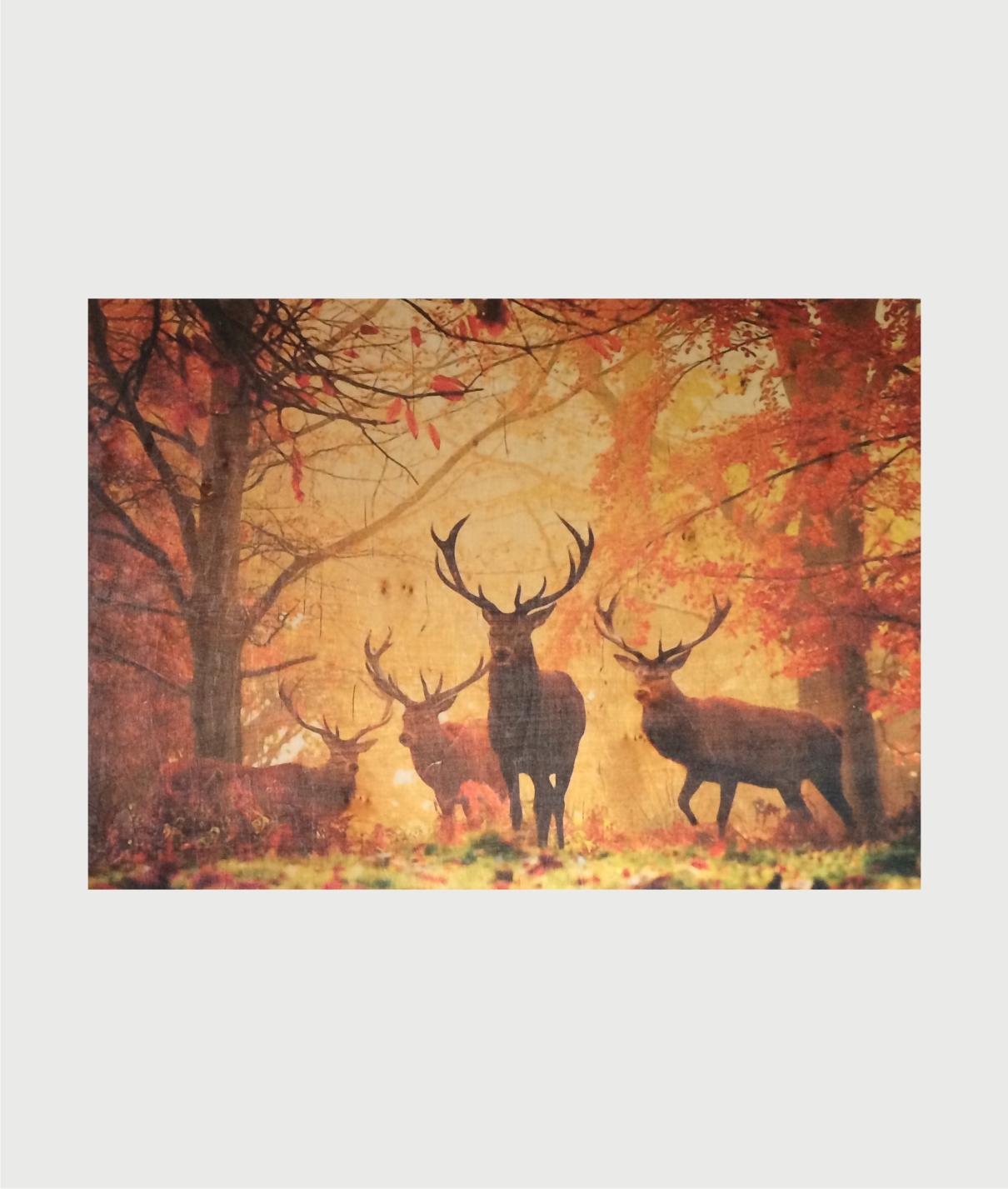 Billede i træ med krondyr i efterårs skov 00015