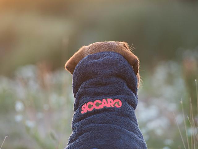 Siccaro Supreme hundekåbe - GRANIT