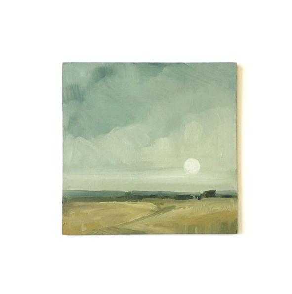 Moonlit Field 00051