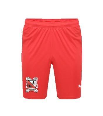 Puma Away Shorts 19/20 Adult (Pre-Order)