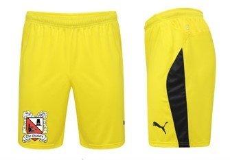 Puma Away Shorts Junior 18/19