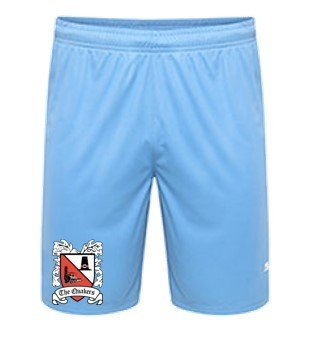 Puma Goalkeeper Shorts Blue Adult 18/19 (Ordered on Request)