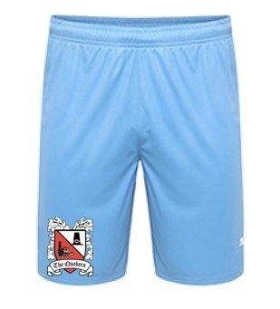 Puma Goalkeeper Shorts Blue Junior 18/19 (Ordered on Request)
