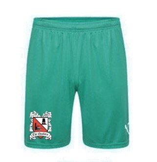 Puma Goalkeeper Shorts Green Adult 18/19 (Ordered on Request)