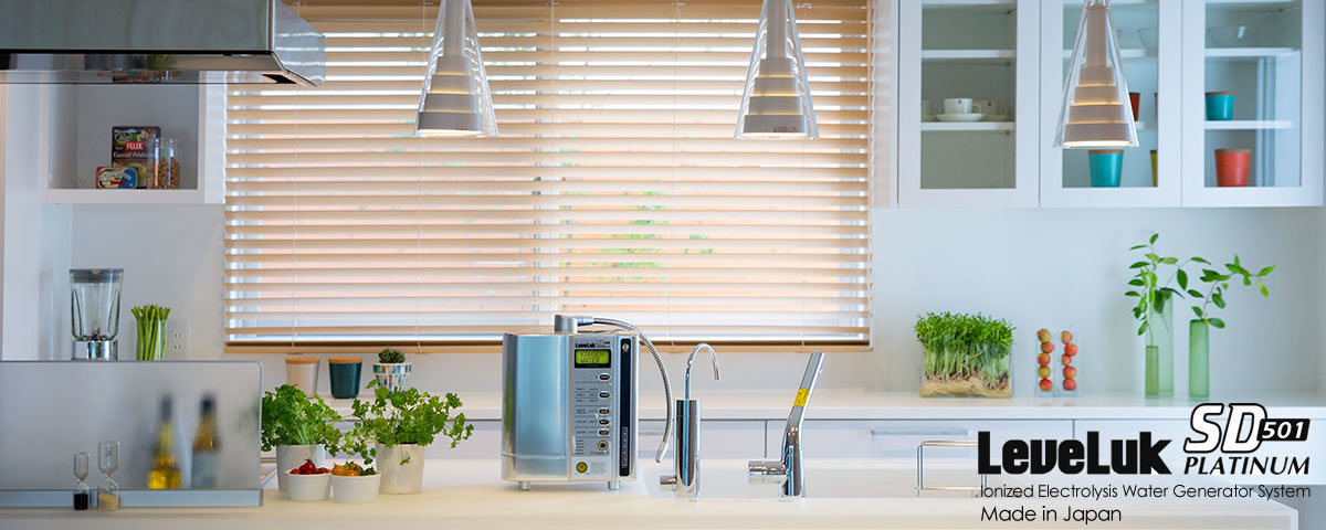 Kangen Alkaline Water Filter machine London UK