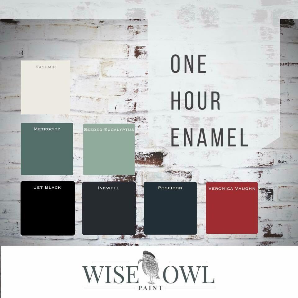 Wise Owl One Hour Enamel
