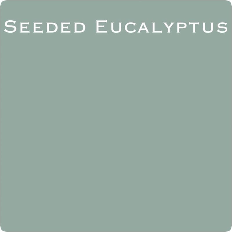 Seeded Eucalyptus Wise Owl Chalk Synthesis Paint - LIMITED