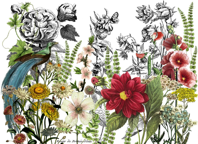 Midnight Garden 24×33 Decor Transfer