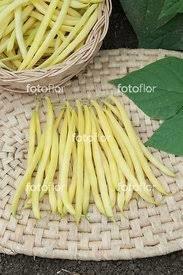 Fèves françaises fines jaunes bio 3/4 lb.