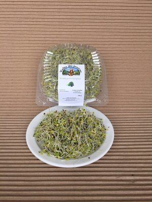 Germination de brocoli bio 140 g