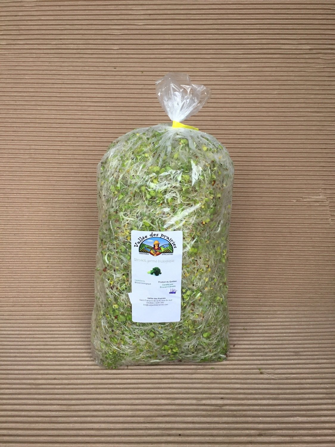 Germination de brocoli bio 500 g