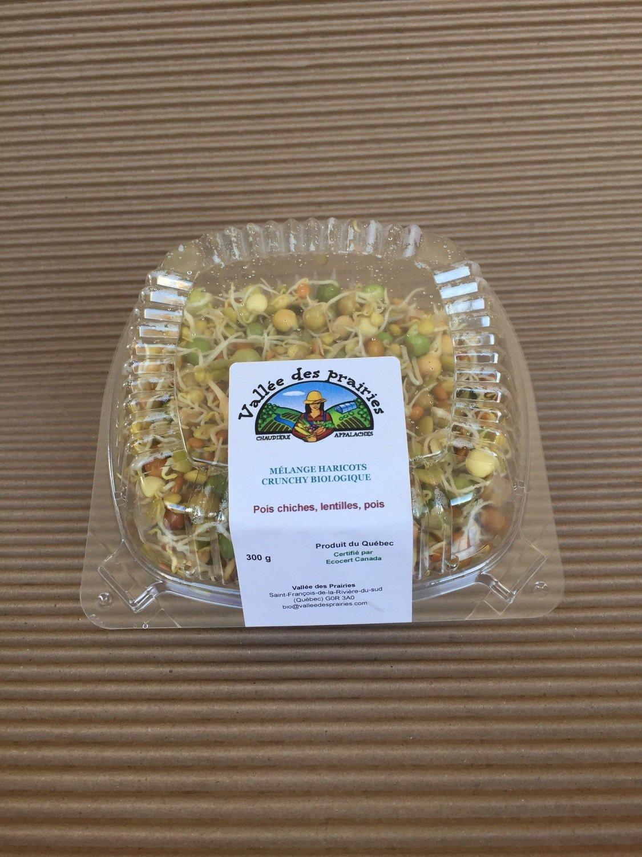 Germination mélange haricot crunchy bio 300g