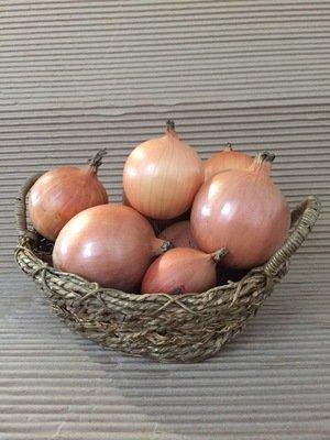 Oignon jaune bio 2 lbs