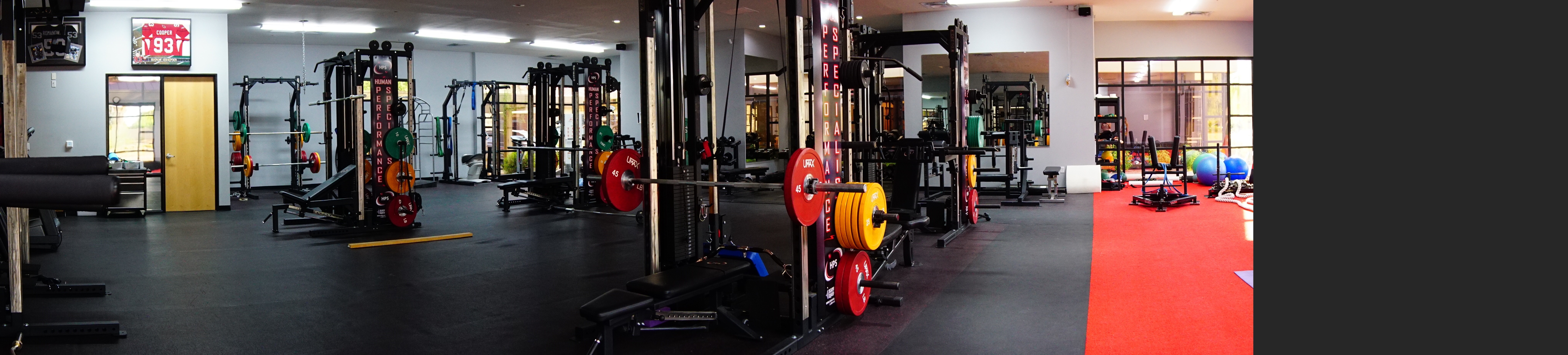 Personal Training- Package of 12 sessions 00048
