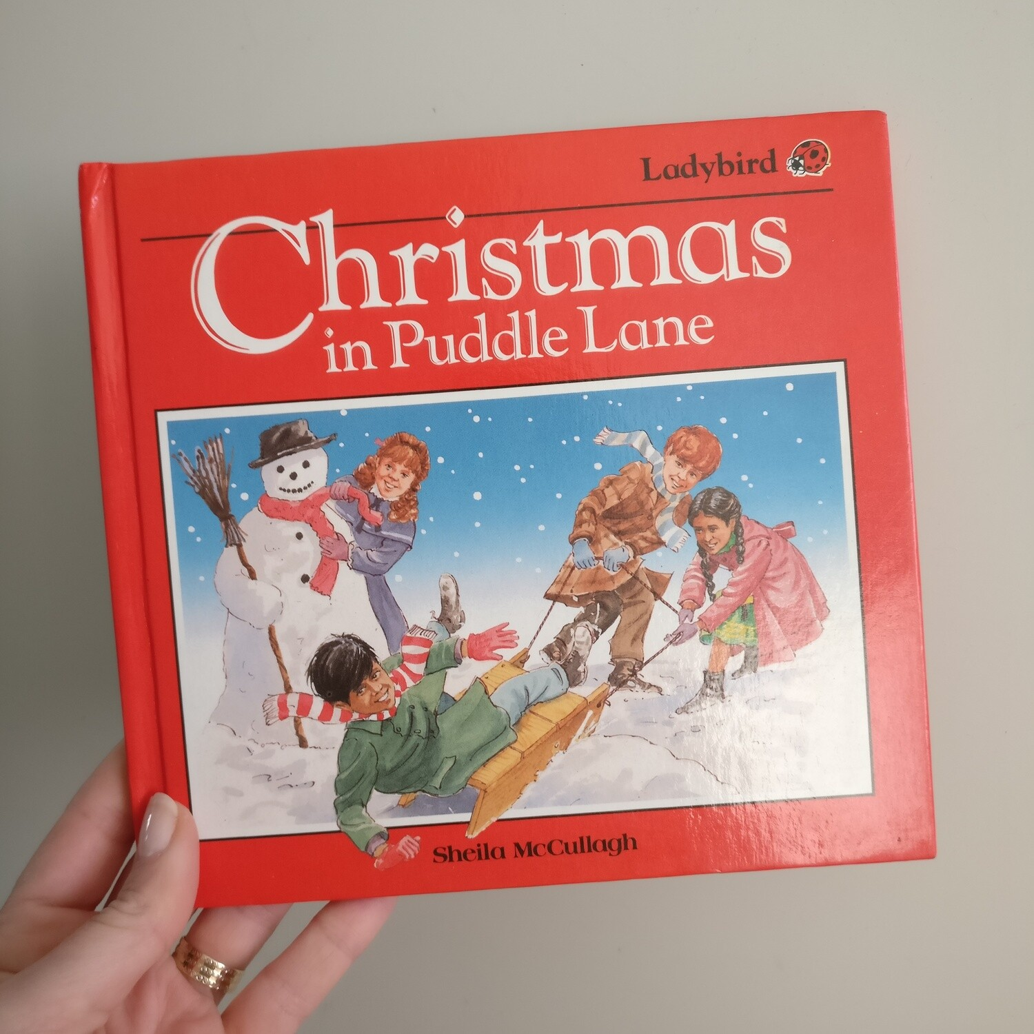 Christmas in Puddle Lane Ladybird Notebook